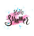 inscription hello summer on a pink background vector image vector image