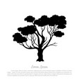 black silhouette of a tree on white background vector image vector image