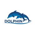 dolphinarium dolphin logo banner flat vector image vector image