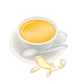 Ginger Tea with Honey in Coffee Cup vector image