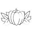 isolated pumpkin design vector image vector image