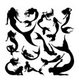 mermaid silhouettes vector image