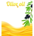 Olive oil and branches with olives background vector image