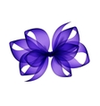 purple transparent bow top view on background vector image vector image