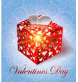 valentines day gift vector image