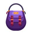 women fashion purse or ladies handbag icon vector image