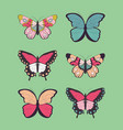 collection six hand drawn colorful butterflies vector image vector image