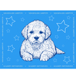 Dog Golden Retriever on a blue ornamental backgrou vector image vector image
