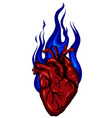 heart in blue fire on withe vector image vector image