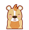 line color adorable and smile bear wild animal vector image vector image
