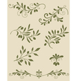 olive decorative vector image vector image