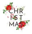 minimalist christmas poinsettia flower card vector image vector image