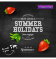 Summer design Poster for summer holidays vector image vector image