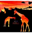 Giraffe Animal Watercolor Background vector image