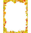 autumn leaves frame isolated on white eps 10 vector image