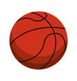 ball basketball sport equipment vector image vector image