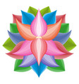 beautiful lotus flower symbol colorful vector image vector image