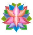 beautiful lotus flower symbol colorful vector image vector image