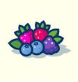 forest berries ripe berries leaves vector image vector image