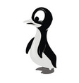 penguin 3d cartoon character vector image vector image