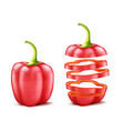 realistic red bell pepper vector image vector image