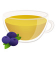 tea from natural fruits berry tea in a cute vector image vector image