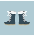 Winter Shoes Felt Boots vector image vector image
