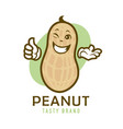 cartoon winking peanut character vector image