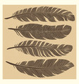 set of grunge vintage bird feathers design vector image