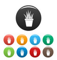 aloe pot icons set color vector image