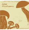 Background with wild hand drawn mushrooms Can be vector image vector image