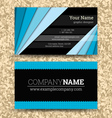 Premium business Card Set EPS10 vector image vector image