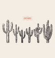 Set of cactuses hand drawn ink