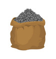 bag of etherium sack of cryptocurrency lot of vector image vector image