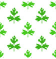 coriander herb chinese parsley seamless pattern vector image vector image