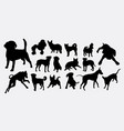 dog pet animal activity silhouette vector image vector image