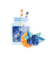 fresh cocktail with blueberry and orange glass vector image vector image