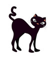 funny black cat icon vector image vector image