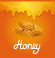 natural honey poster in cartoon style vector image vector image