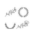 branch floral laurel vector image vector image