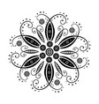 floral element of design vector image vector image