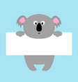 funny koala hanging on paper board template vector image vector image