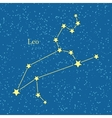 Leo Zodiac on Background of Cosmic Sky vector image