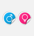 Male and female sticker set vector image