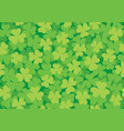 seamless clover pattern bright vector image vector image