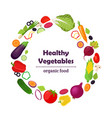 set of vegetables farm productmade in flat style vector image
