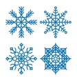 Various winter snowflakes set vector image