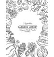 template with hand drawn vegetables vector image vector image