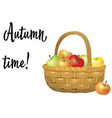 wicker basket full of apples isolated on white vector image vector image