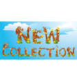 Words NEW COLLECTION vector image vector image